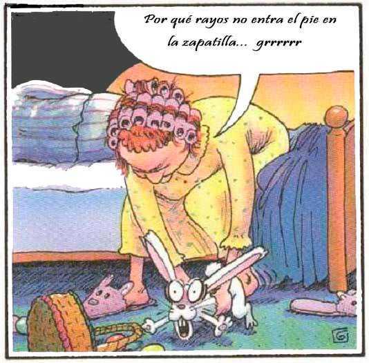 la señora no está muy despierta, quiere ponerse al conejo de zapatilla