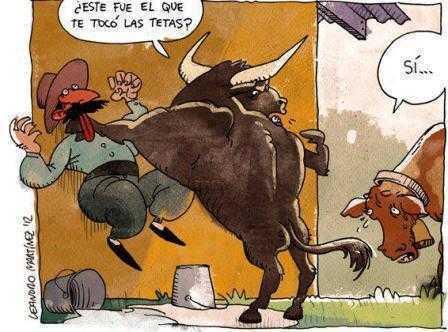 un toro mosqueado con el ganadero