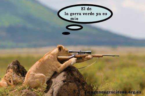 leona con un rifle