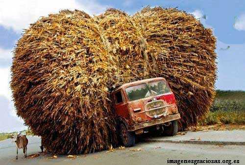 camion con carga al 300 por ciento