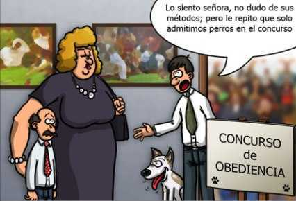 la mujer lleva al marido a una competicion de obediencia canina