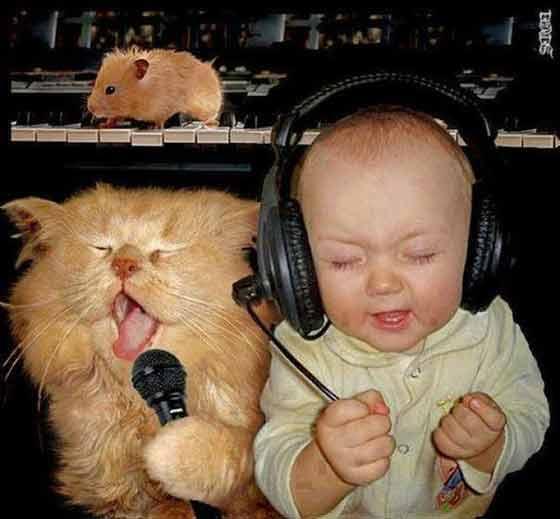 imagen graciosa con un niño y un gato