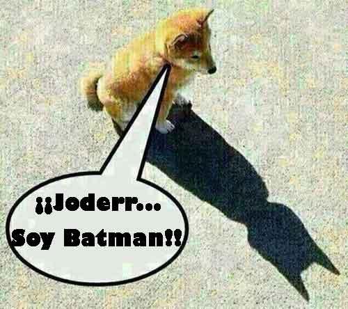 un perro y su sombra con forma de batman