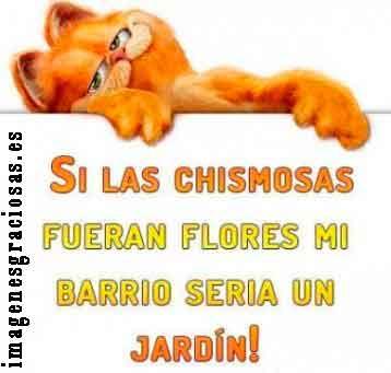 imagen graciosa con Garfield para compartir