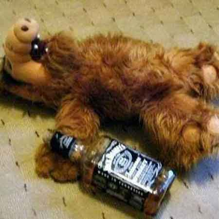 imagen graciosa de Alf con wiskie