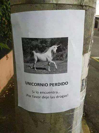 cartel en busca de un unicornio