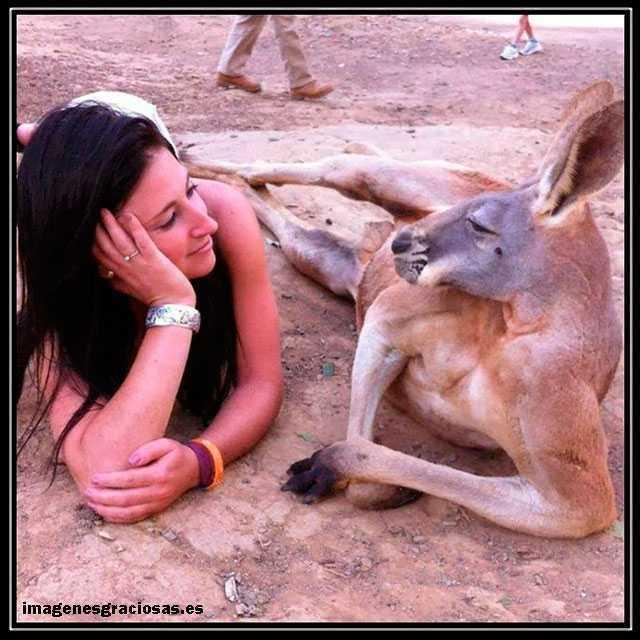 foto graciosa con chica y canguro